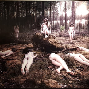 Origines 11 par Vanda Spengler - photographie